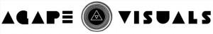 av-logo-802px-wide1-300x49